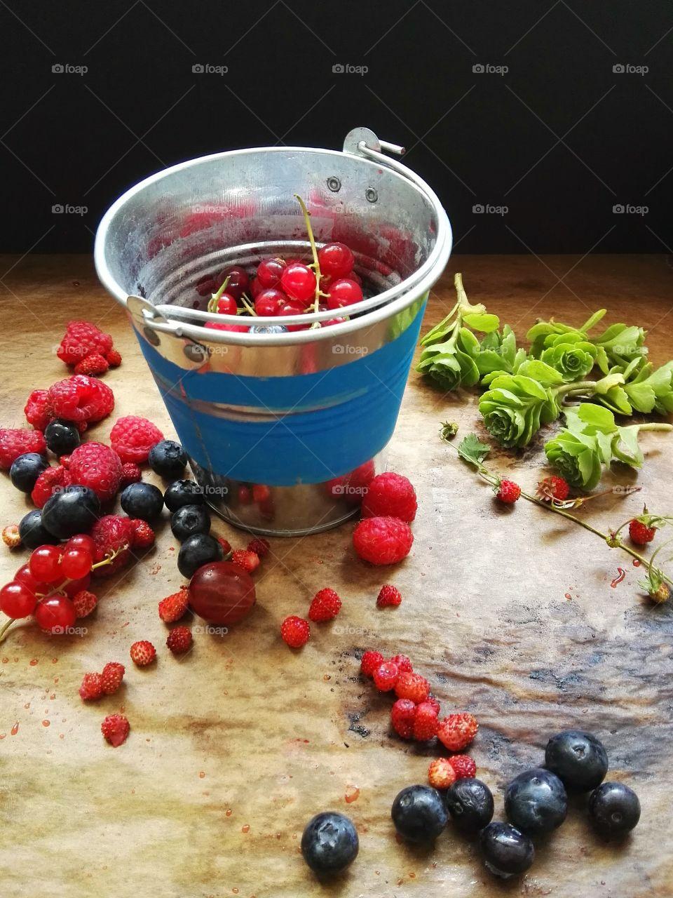 Berries in blue metal bucket