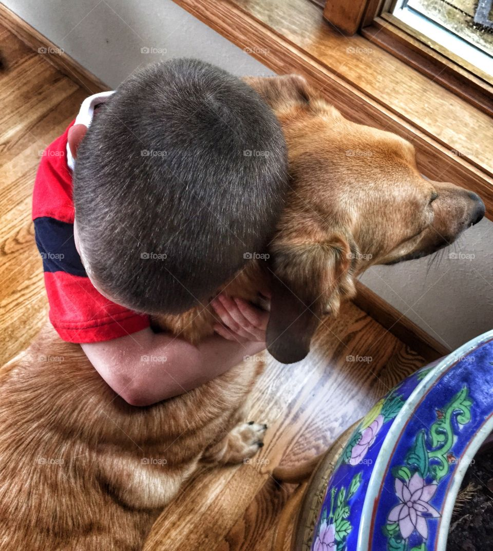 Love between boy and his dog