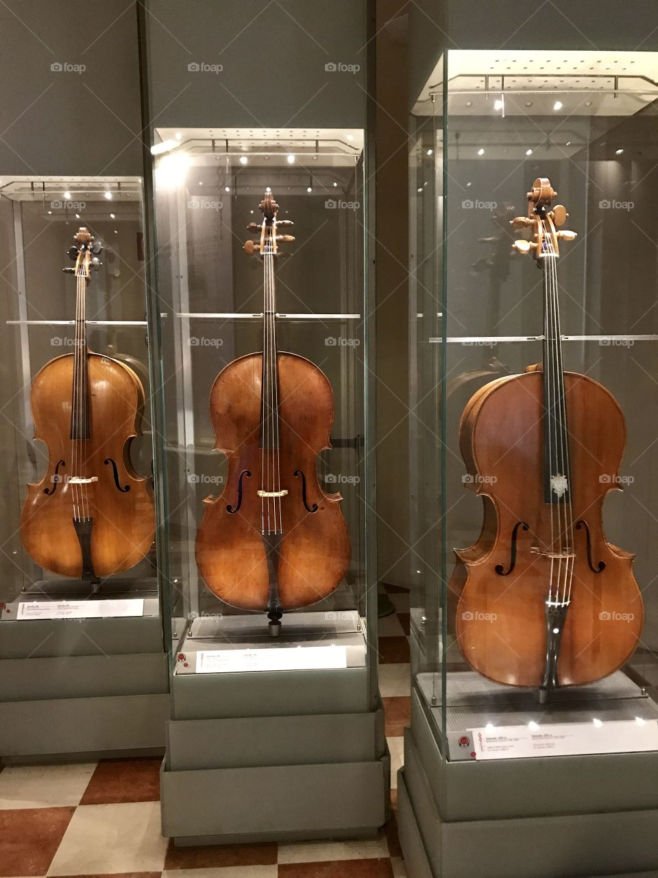 I'm the halls of the Accademia, houses the Museo of Music! Here 3 pristine double bass stand!