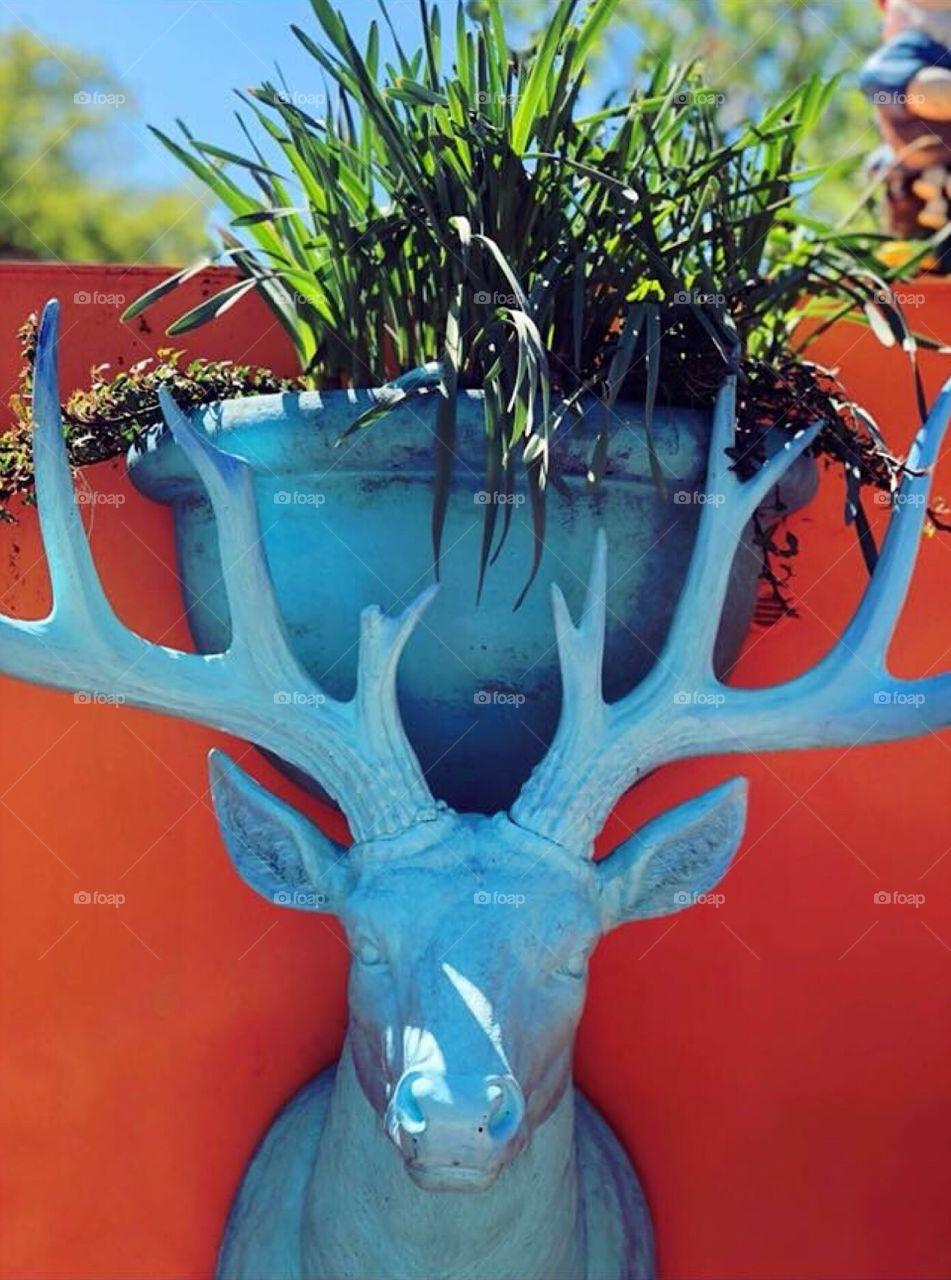 Amsterdam blue stag head flower pot on vibrant orange background