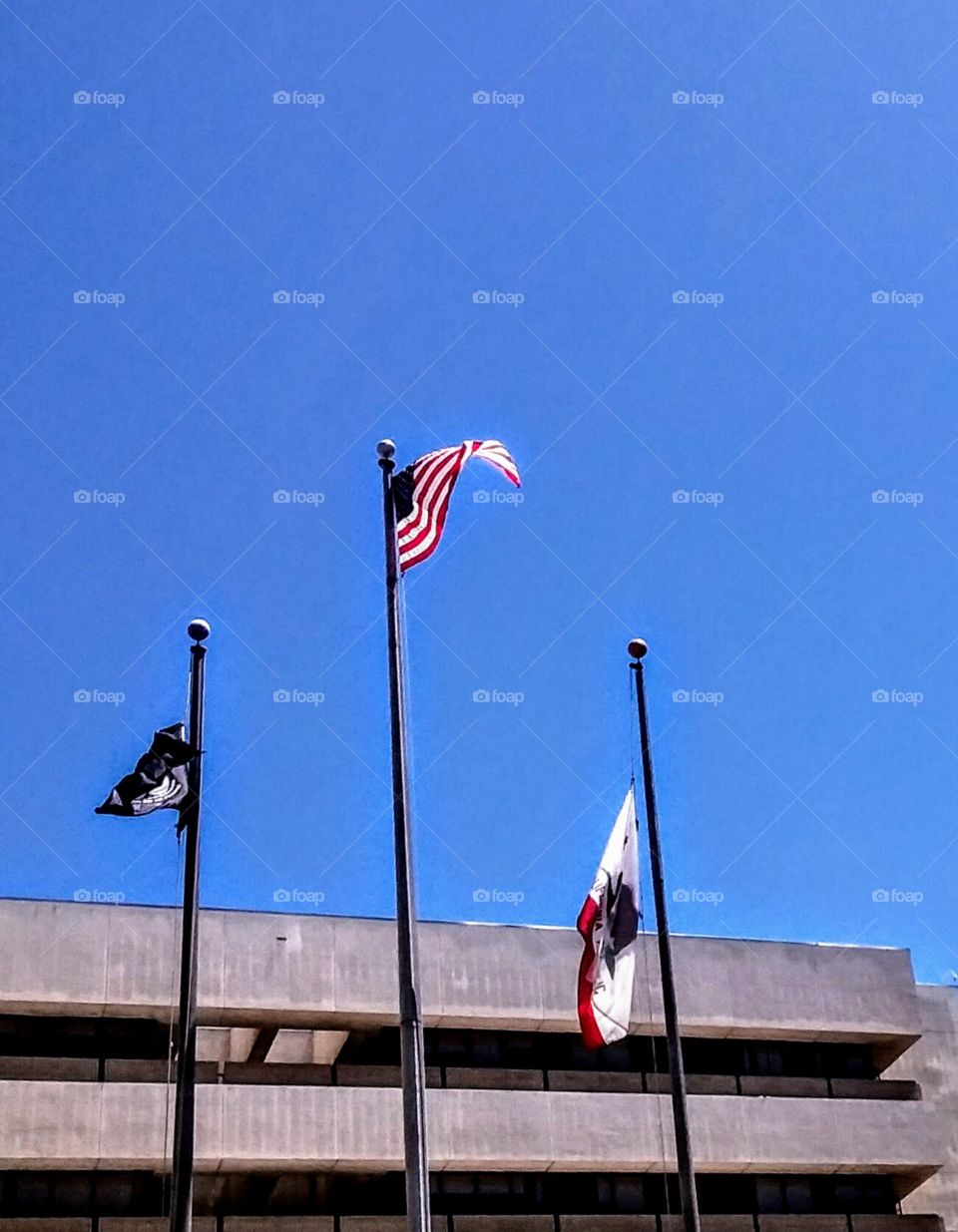 Windy Flag Day