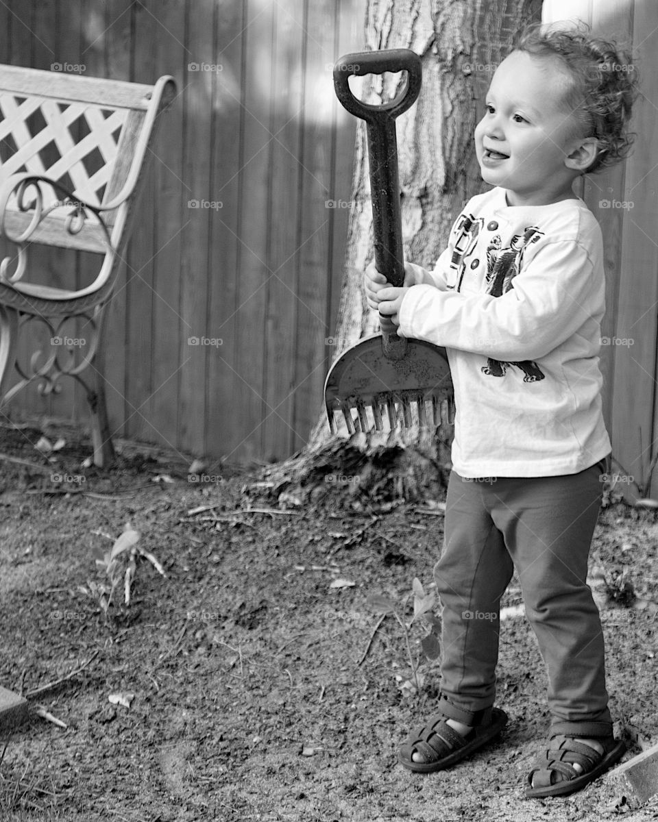 A cute little toddler boy plays with a toy garden rake in the backyard on a sunny summer day.